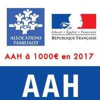 Petition Aah A 1000 En 2017 Allocation Adulte Handicape