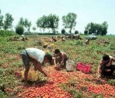 L'Italia deve essere inclusa negli elenchi delle nazioni nelle quali vengono disattesi i diritti dei lavoratori.