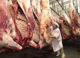 Perchè la carne uccide la terra...