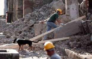Mentre Pompei crolla, il MIUR si appresta a buttare 30 miliardi in una impresa inutile