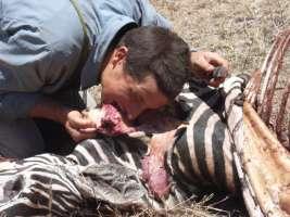 'CONTRO Bear Grylls e lo squartamento di animali