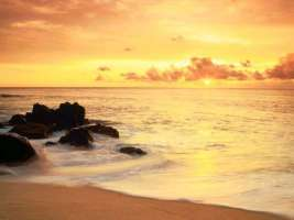 Salviamo le spiagge dalla cementificazione