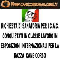 SANATORIA C.A.C. Cane Corso