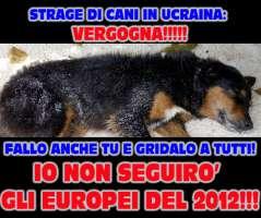 BOICOTTIAMO GLI EUROPEI DI CALCIO 2012