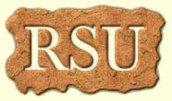 Rinnovo delle RSU di Tenaris Dalmine
