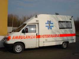 Chiediamo allo stato di istituire ambulanze veterinarie!!!