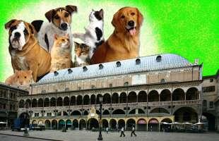 Padova: manifestazione pro animali