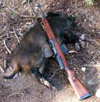 Aboliamo la caccia