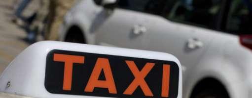 Obblighiamo i taxisti di prendere a bordo i nostri animali