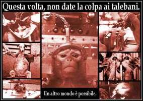 Petition for change now - NO ALLA VIVISEZIONE !!!