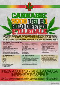legalizzazione della cannabis in italia