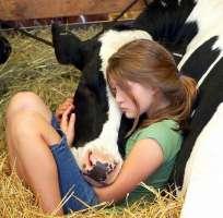Servizio sanitario per gli animali da compagnia