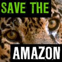 L'AMAZZONIA E' IN PERICOLO!