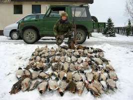 fermiamo la modifica alla legge sulla caccia