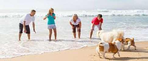 Cani nelle spiagge libere del Lazio