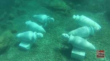 No ai pesci nel MuMart di Golfo Aranci.
