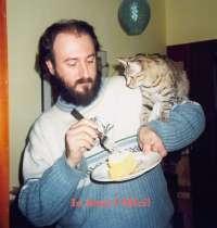 No alle ricette per cucinare i gatti