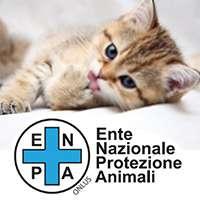 Sig. Ministro salvi il medico amico degli animali!