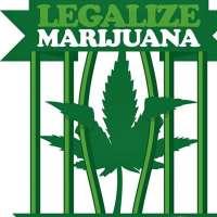 Legalizzazione Marijuana