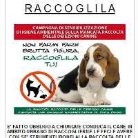 STOP AI PROPRIETARI DI CANI CHE NON LA RACCOLGONO