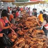 fermare la macellazione e la vendite in europa, carne dig