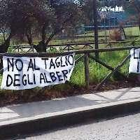 Addio al Parco in Via della Biga di Castro-S.Barbara VT