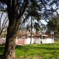 Fermiamo il cemento nel Parco di Modena !
