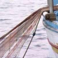 Regolamento nidoneo per pescatori con reti da posta
