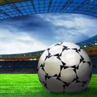 Legge sugli stadi Modello Italiano