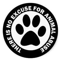 Carcere per chi sevizia e uccide gli animali domestici