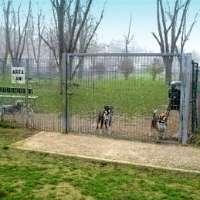 Pogliano Milanese senza un area cani
