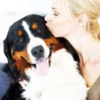 Cancellazione pagina Facebook Il cane e' una bestia satan