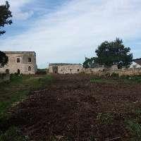Palese, ruspe in azione: il villaggio neolitico rischia..