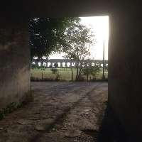 Il Parco degli Acquedotti: lo vogliamo ancora più bello!