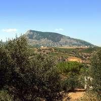 Insieme per la  Riserva Naturale Bosco d'Alcamo