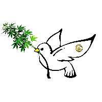Legalizzare l'uso medico e ricreativo della cannabis