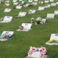 Realizzazione Cimitero per Animali a Mantova