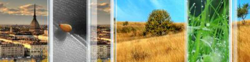 Lettera alla comunità cristiana di Torino