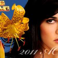 Richiediamo di trasmettere la telenovela Flor Salvaje