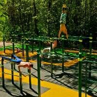 Parco Workout/Calisthenics (villa di caivano)