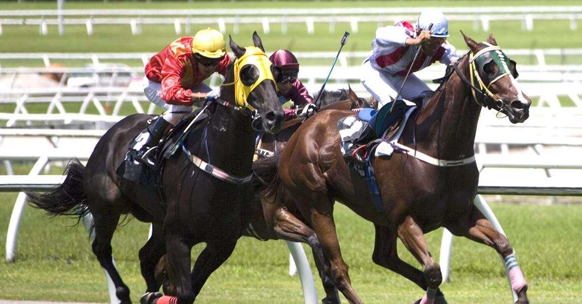 Abolite le corse dei cavalli!