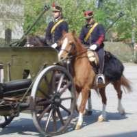 Contro abolizione Reg.to Art.ia a cavallo