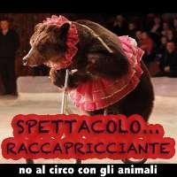 No al circo con gli animali ad Ischia