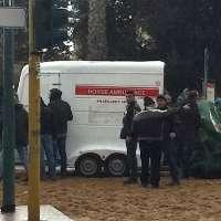 Stop al massacro dei cavalli ai carnevali di Oristano