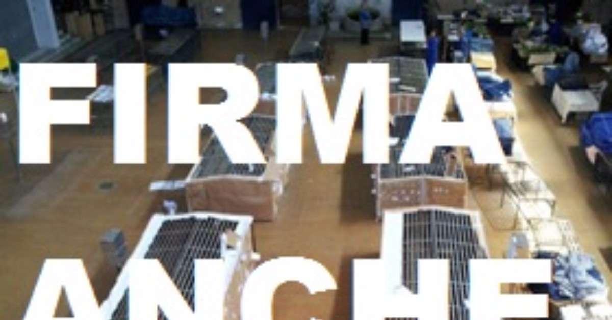 rilanciare il mercato coperto di via Monforte Campobasso