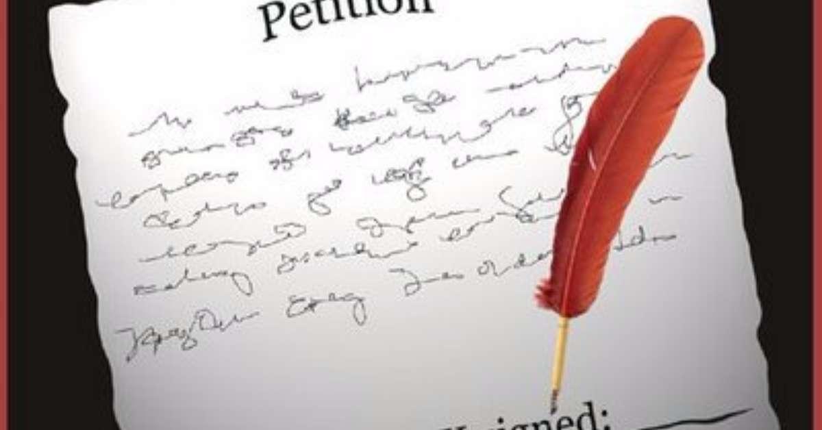 Creazione sito web istituzionale per e-petitioning