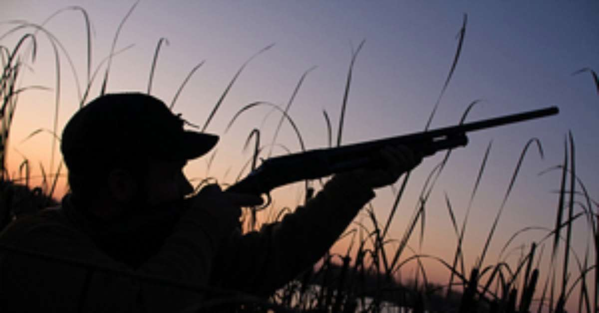 SPARA IL TUO NO contro la caccia nei parchi