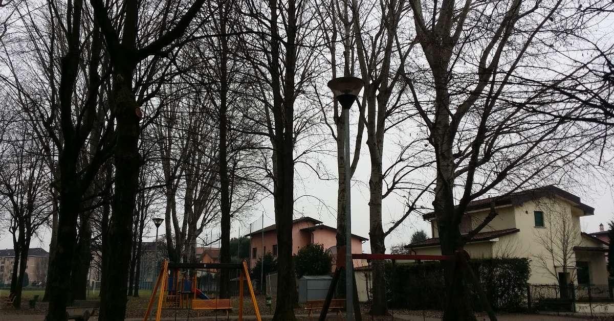 Salviamo i pioppi del Parco Gerundo