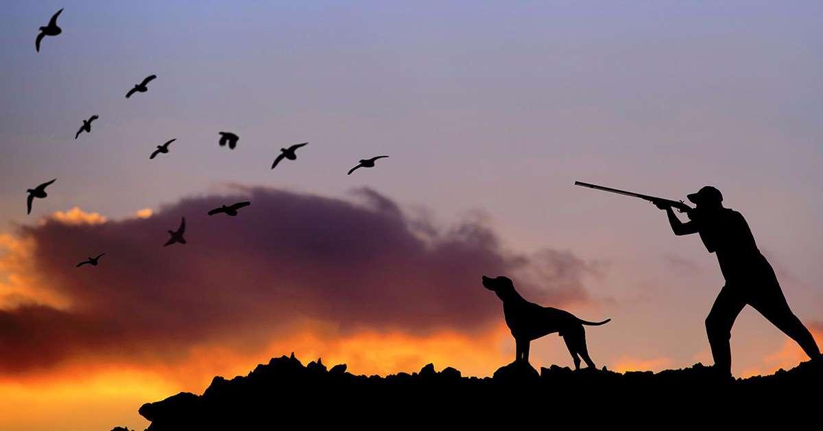 Rinvio della caccia? No, vogliamo l'abolizione!