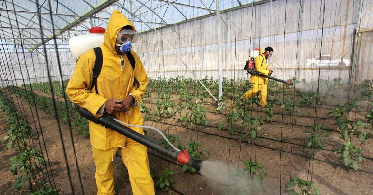 Contaminazione del cibo: incrementare i controlli!